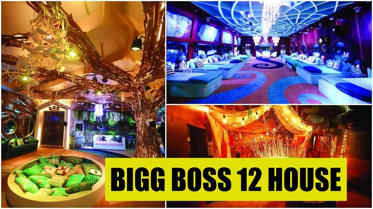 bigg boss 12 - photo #10