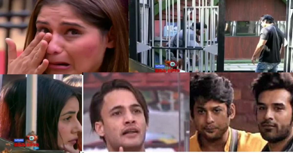 Arti, Shehnaaz, Sidhart, Asim, Paras from Bigg Boss 13