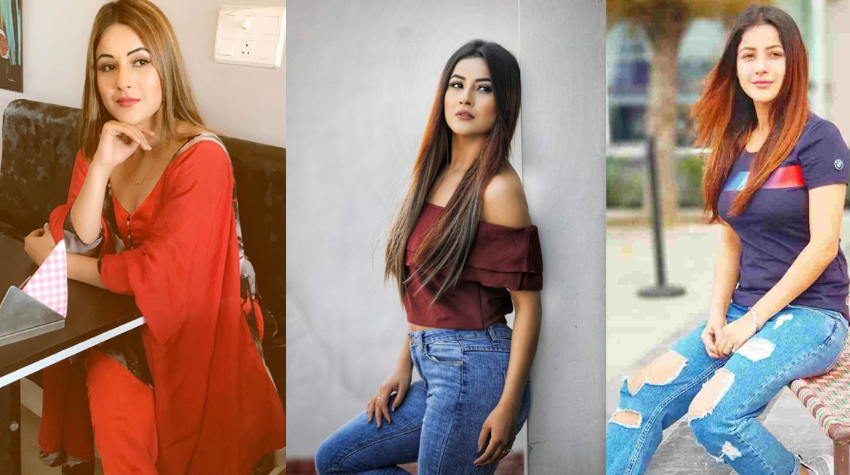 Shehnaaz Gill to work with this famous Punjabi singer in a music video!