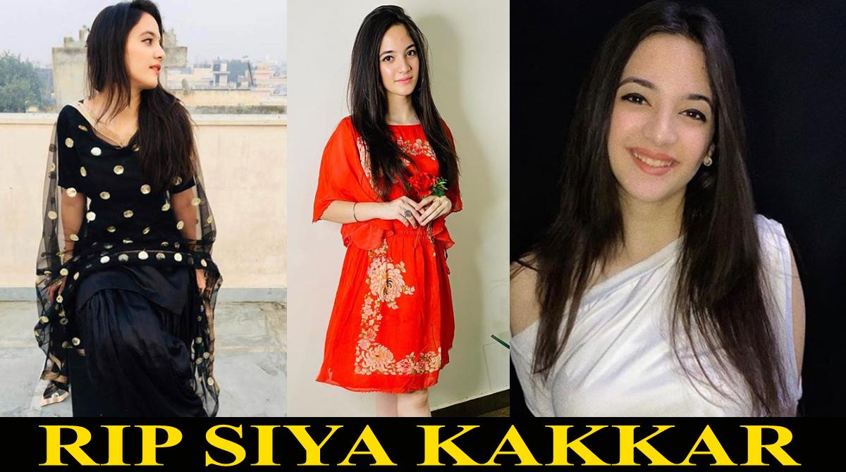 Tik Tok star Siya Kakkar commits suicide; Check her last post