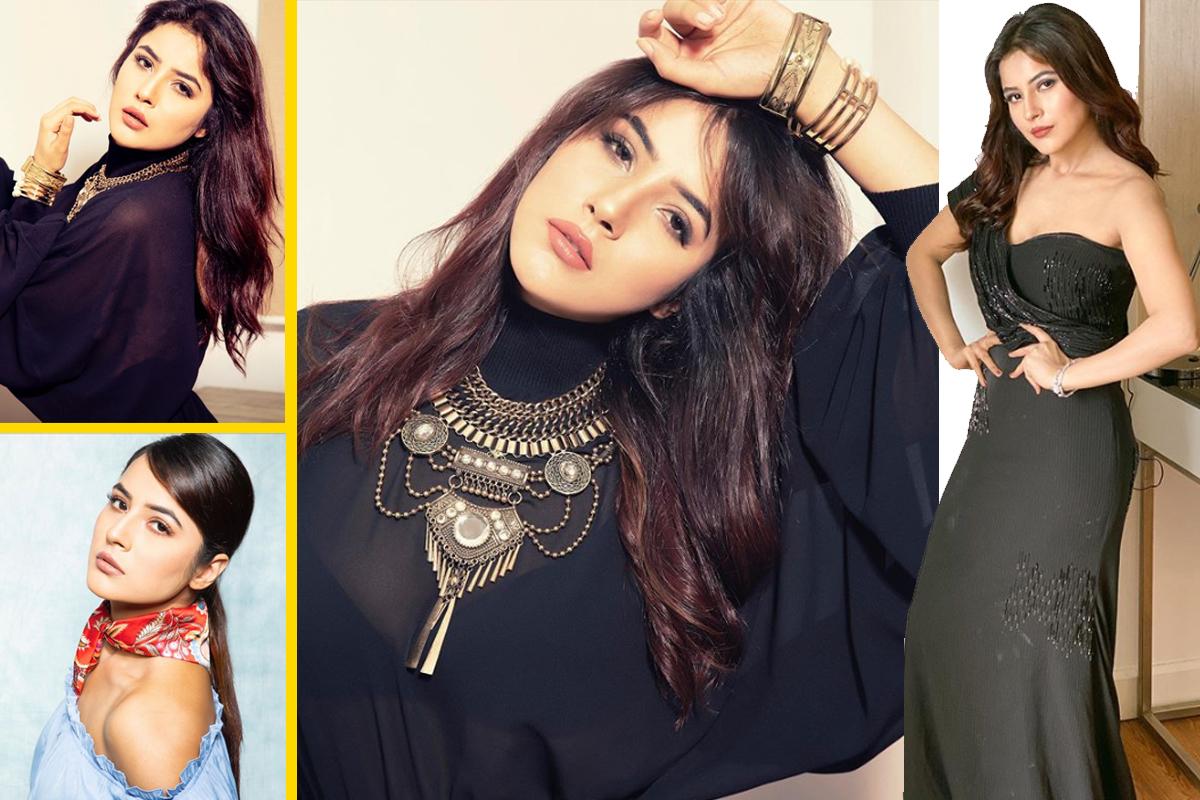 Shehnaaz Gill looks ravishing in her recent photoshoot